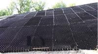 ОР/СН 5/160/т.1,5 СН Георешетка для откосов полимерная 2,4*5,25М черная высота 5 см