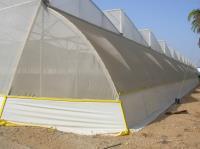 Затеняющая  сетка для теплиц (4Х50М) 50Г/М2темно-зеленая