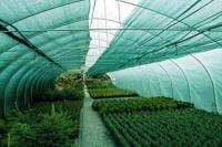 Теневая сетка (3Х100М) 55Г/М2 зеленая