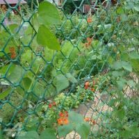 Пластиковая садовая решетка17*17мм 1*10мХакиФ-17