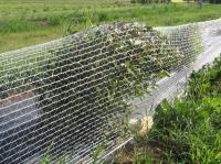 Сетка для защиты от птиц 2х10м Хаки
