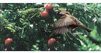 Пластиковая сетка для защиты от птиц
