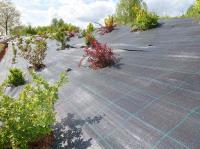 Агротекстиль нетканые материалы 100г/м.кв 4,20*100м