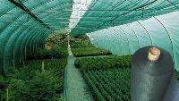Затеняющая  сетка для теплиц зеленая (3х50м) 80г/м