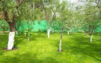 Побелка для деревьев природная известь, паста 1кг