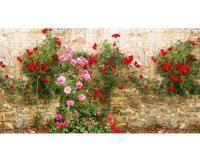 Фотосетка для декора забора и фасада РАДА 032-м секция 2,5 метра x 1,58 метра (ПВХ)