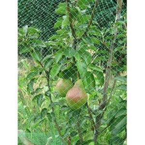 Сетка от птиц Ортофлекс зеленая 2*10 м