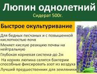 Люпин белый сидерат 300г