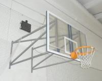 Ферма баскетбольная вынос 2 м