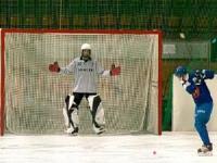 Сетка для хоккейных ворот 3,66х2,14х0,9х1,2 м нить5мм Белая (пара)