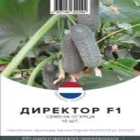 Семена Огурца (Пчелоопыляемый)
