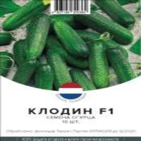 Семена Огурца (Партенокарпический)