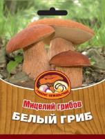 Мицелий грибов БЕЛЫЙ ГРИБ