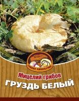 Мицелий грибов ГРУЗДЬ БЕЛЫЙ