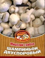 Мицелий грибов ШАМПИНЬОН ДВУСПОРОВЫЙ