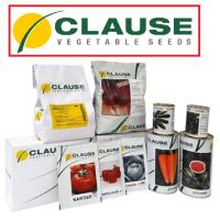 Семена Морковь шант. Мирафлорес F1 500 тыс. шт. (1,6-1,8), Clause