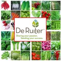 Семена Перец сладк/куб Оранж Глори F1, 1000 шт., De Ruiter Seeds