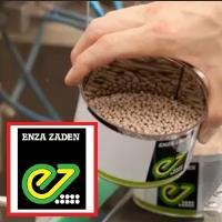 Семена Капуста кольраби Октаве F1, 2500 шт., Enza Zaden