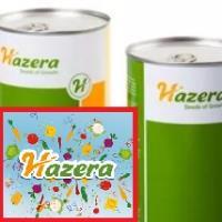 Семена Перец сладк/конус Аккорд А1, 500 шт., Hazera