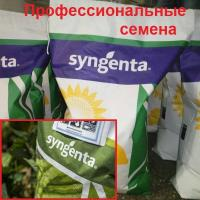 Семена Арбуз Каристан F1, 1000 шт., Syngenta