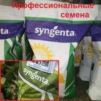 Семена Горох Грюнди, 100 тыс. шт., Syngenta
