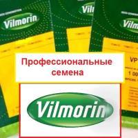 Семена Морковь нант. Концерто F1, 500 тыс. шт. (1,6-1,8), Vilmorin