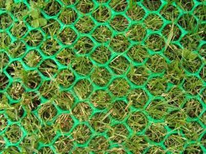 Сетка от вытаптывания газона (экопарковка)  Г-32 Газон-2 2*30м (Зеленый)